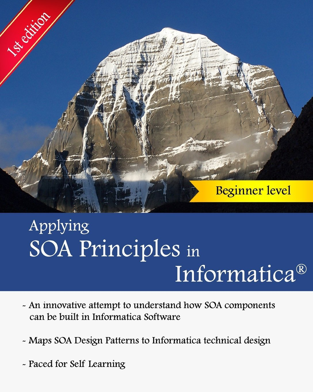 Download applying soa principles in informatica applying for Informatica 9 5 architecture