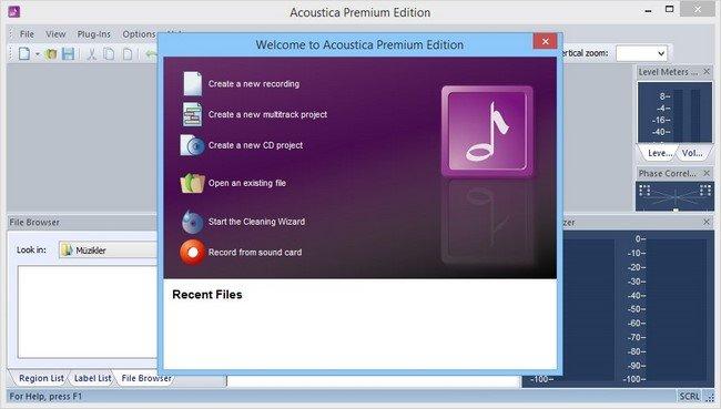 acoustica premium edition portable