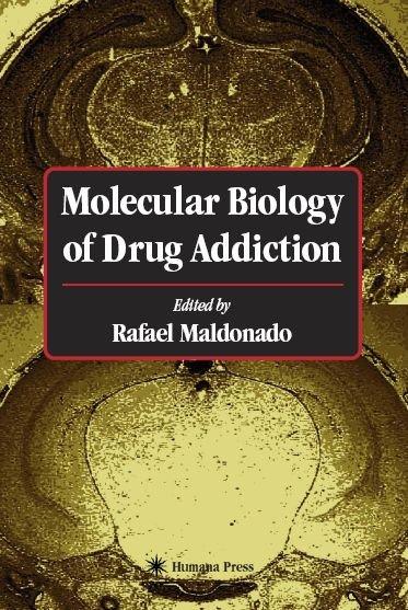 an analysis of drug addiction