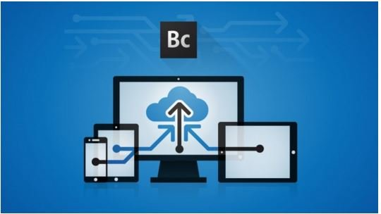 Download Responsive Web Design using Adobe Business Catalyst