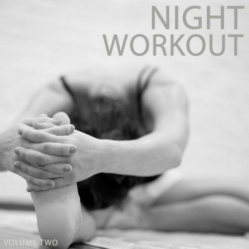 VA - Night Workout, Vol. 2 (Best Of Pushing & Motivating Electronic Dance Music)(2015)