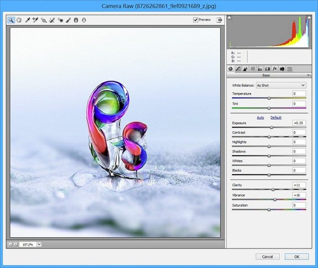 Adobe Camera Raw 10.1