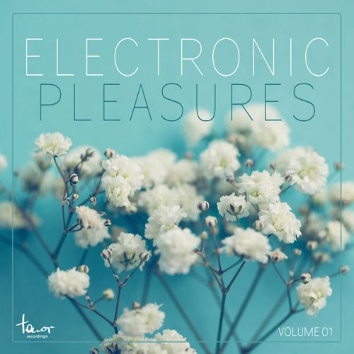 VA - Electronic Pleasures, Vol. 1 (2015)