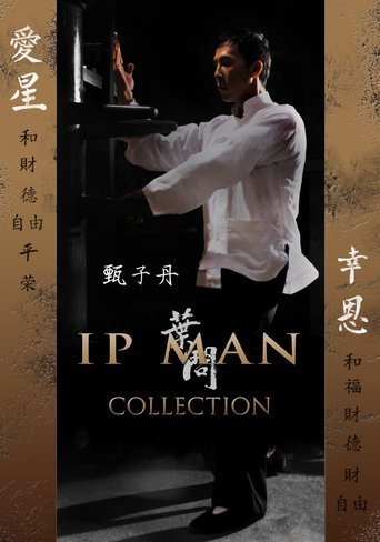 download ip man 3 movie