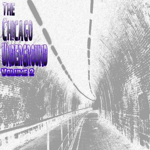 The Chicago Underground, Vol. 2 (2016)