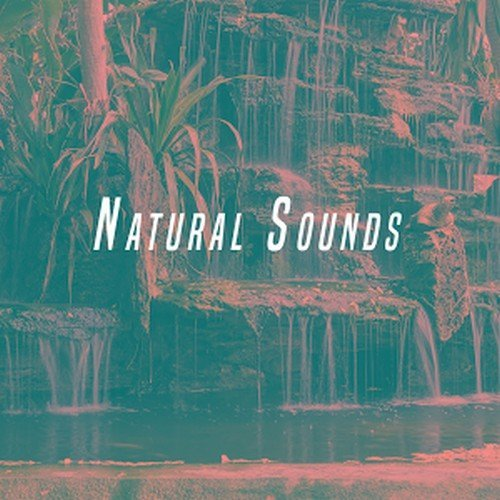 Thunderstorm Sleep - Nature Sounds (2016)