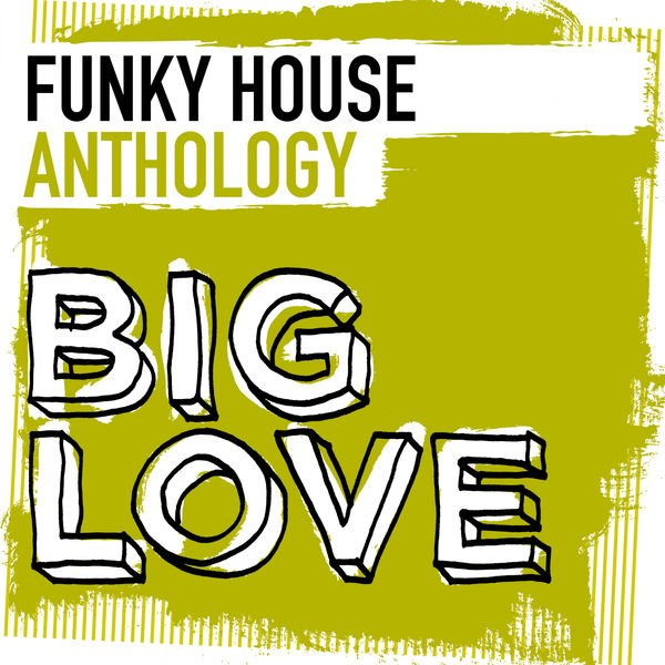Download va big love funky house anthology 2016 for Funky house music