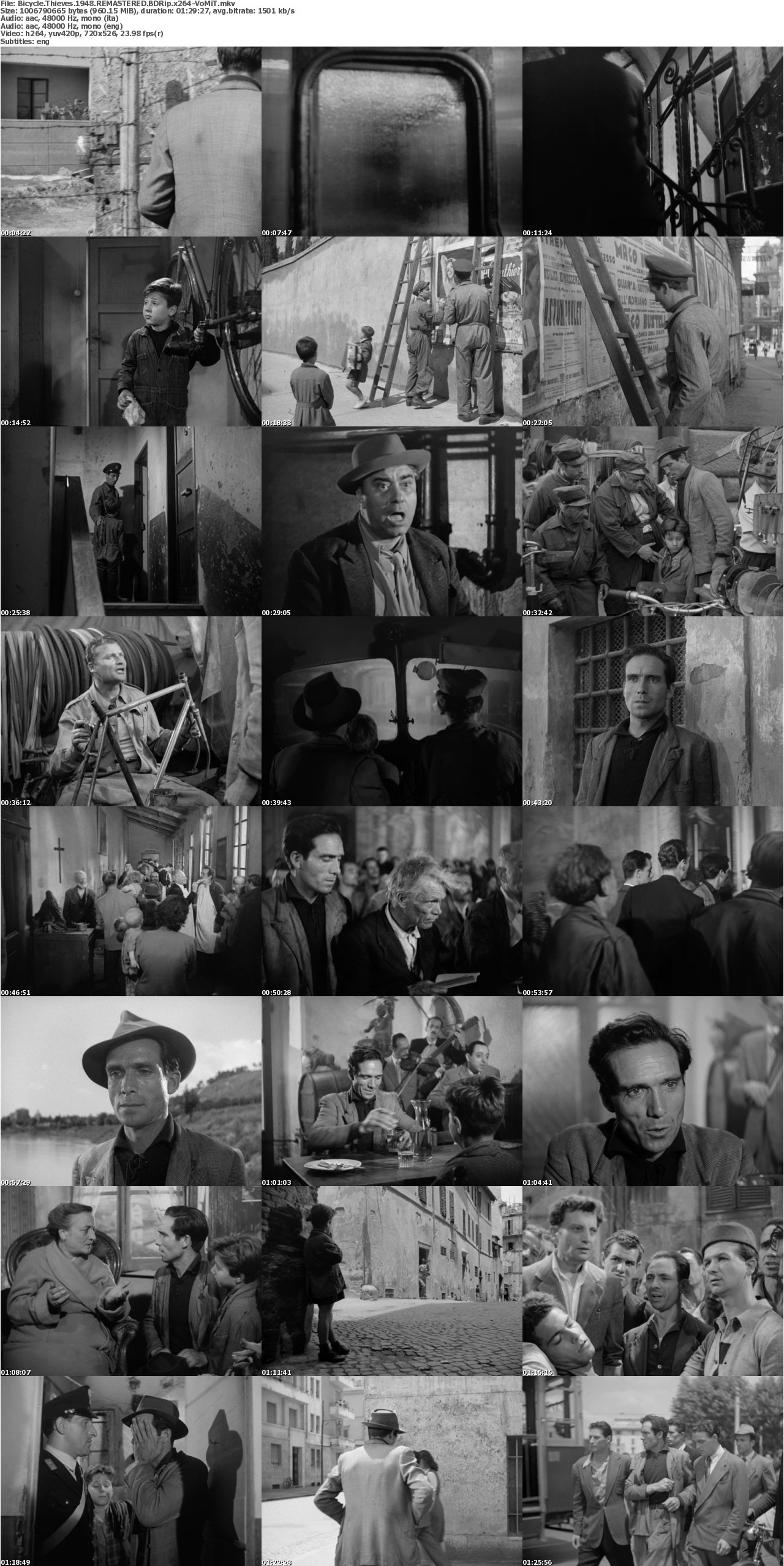 a summary of the movie bicycle thieves Summary the author of the movie report bicycle thieves touches upon the film stating that is an extraordinary movie about the lives of the ordinary people and their trials and tribulations.