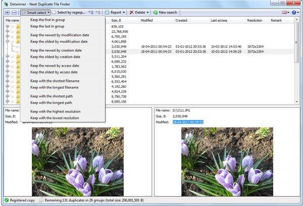 Detwinner 2.03.006 Multilingual + Portable