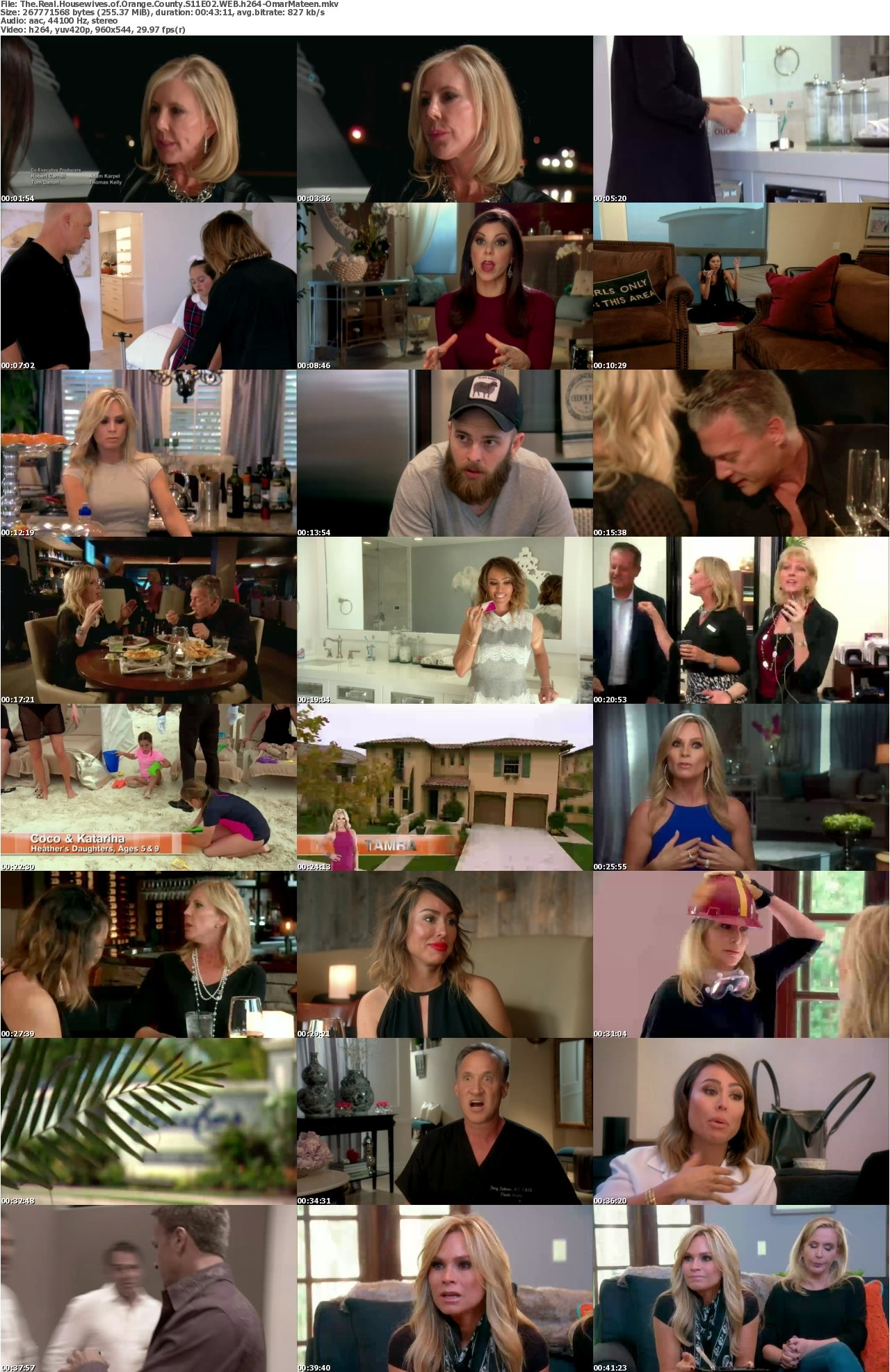 The real housewives of orange county s12e04