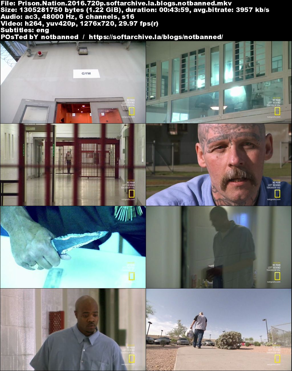 Download National Geographic Prison Nation 2016 720p Hdtv X264 Dhd Softarchive