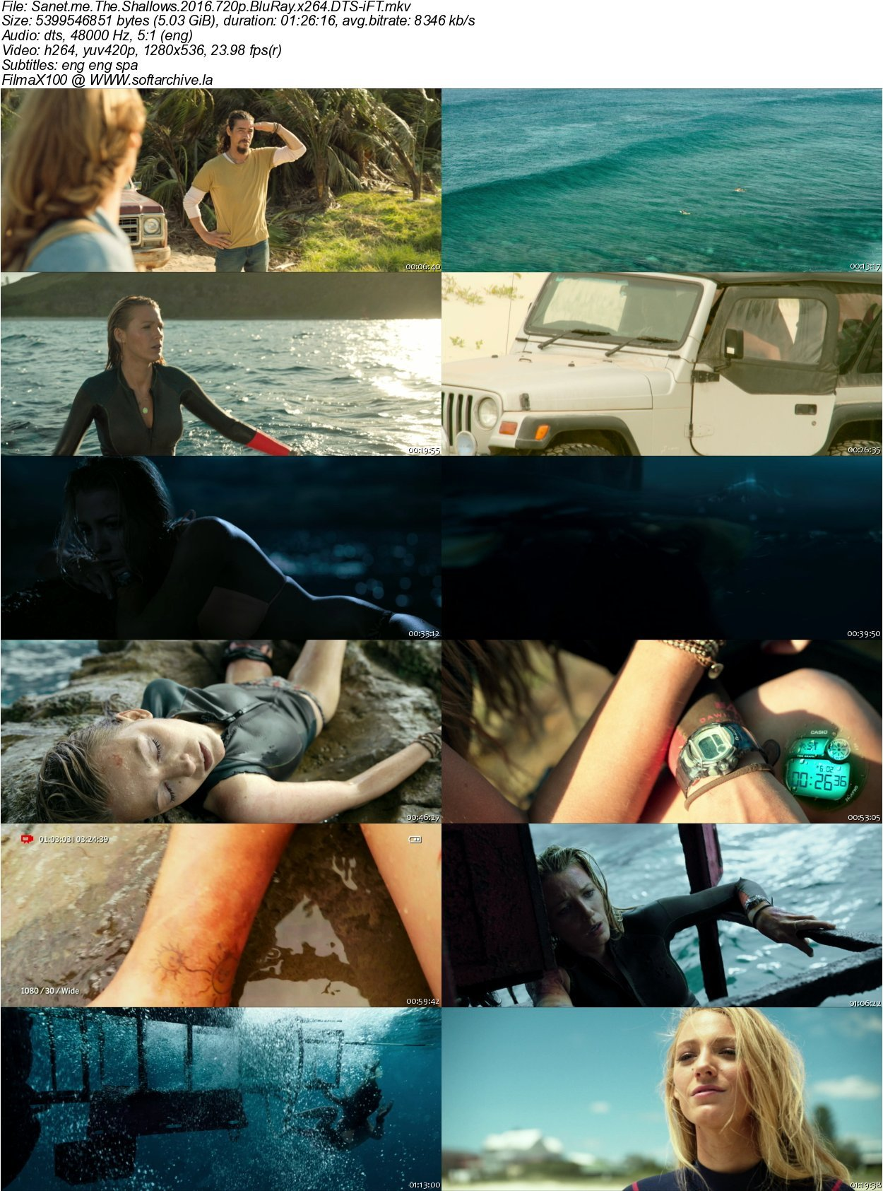 the shallows In the taut thriller the shallows, when nancy is surfing on a secluded beach, she finds herself on the feeding ground of a great white shark.
