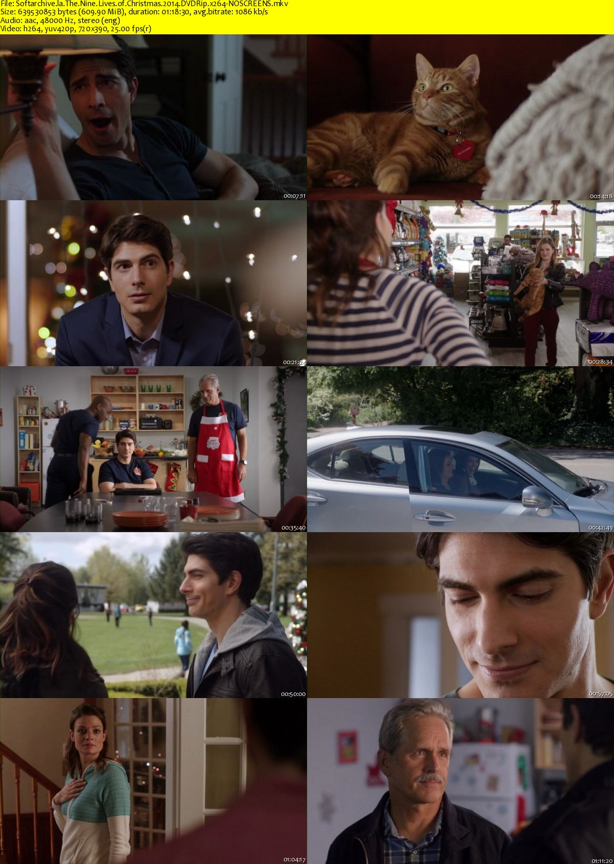 Download The Nine Lives of Christmas 2014 DVDRip x264-NOSCREENS ...