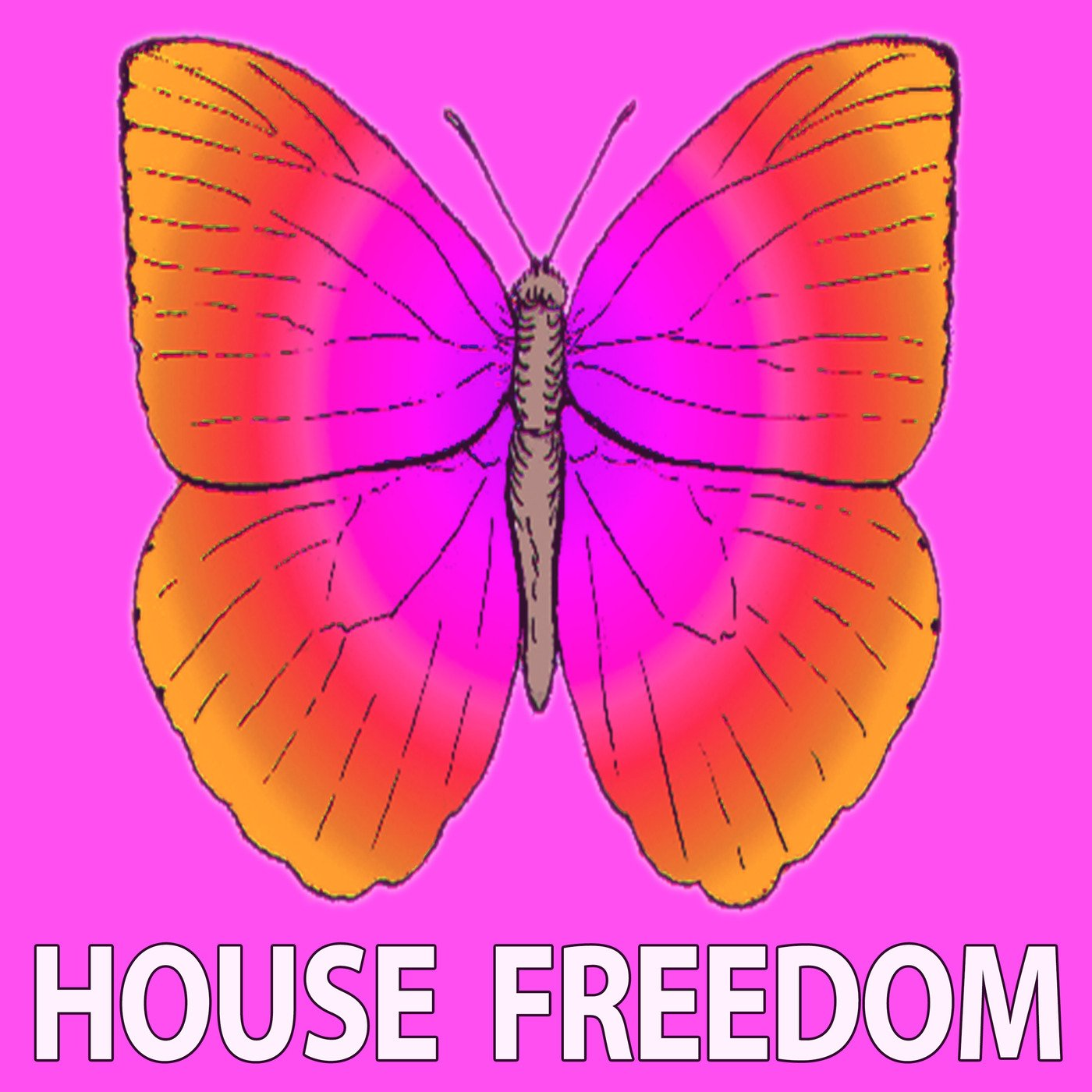 Download various artists minimal freedom 2017 for Minimal house artists