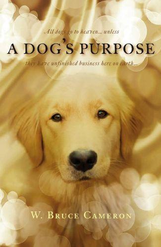 A Dogs Purpose 2017 HC TCRip 800MB x264 AAC - Makintos13