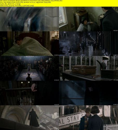 fantastic beasts and where to find them 2016 1080p bluray