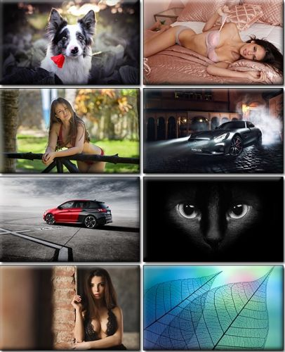 LIFEstyle News MiXture Images. Wallpapers Part (1197)