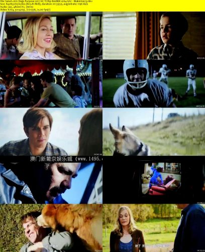 A Dogs Purpose 2017 HC TCRip 800MB x264 AAC - Makintos13