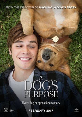 A Dogs Purpose 2017 HC TCRip HQ 550MB - SHERiF