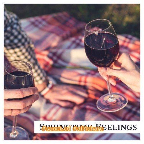 VA - Springtime Feelings Jazz for Lovers (2017)