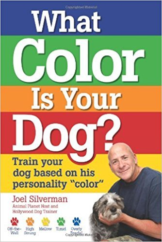 What Color Is Your Dog Train Your Dog Based on His Personality Color