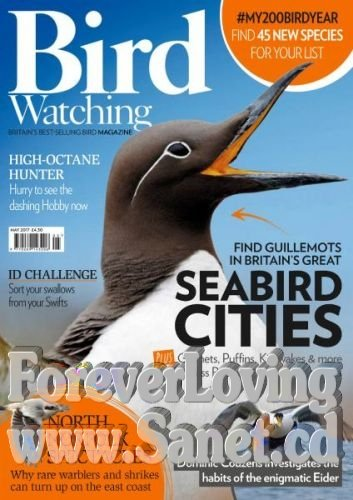 Bird Watching UK -- May 2017