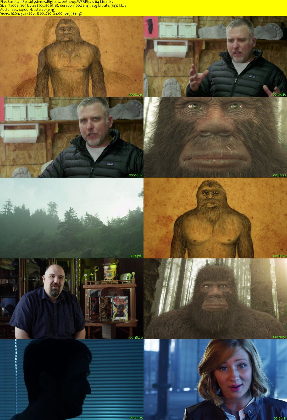 the mystery of bigfoot Watch america's book of secrets - season 2, episode 9 - the mystery of bigfoot: bigfoot is everywhere you look, but why are so many millions of americans obsessed with this mysterious man-ape.