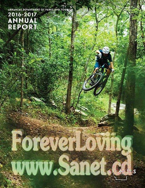 walmart annual report 2017 pdf