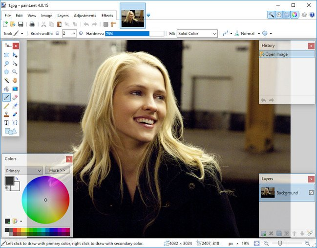 Paint.NET 4.0.15 Portable