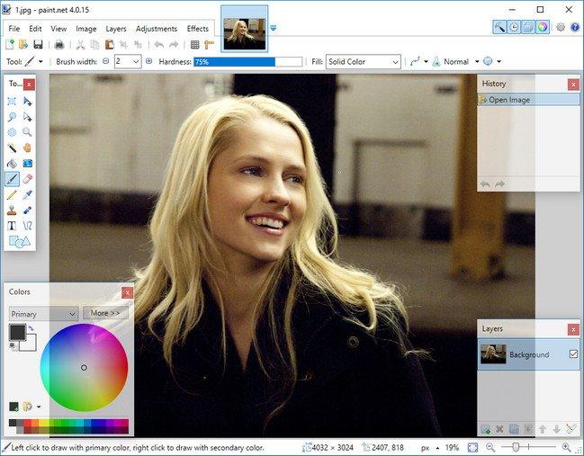 Paint.NET 4.0.17 Portable