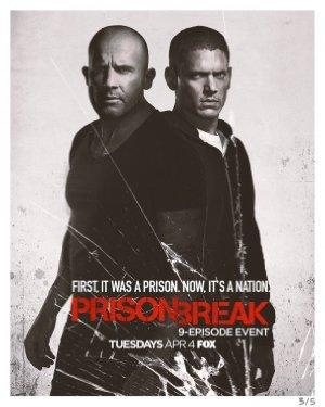 Prison Break S05E03 iNTERNAL 480p x264-mSD