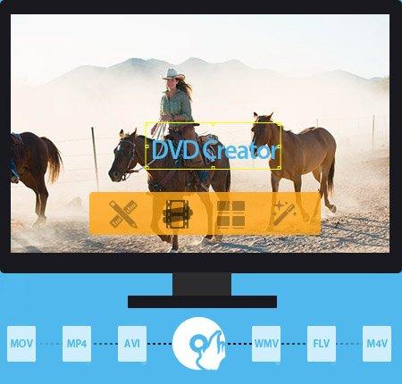 Tipard DVD Creator 5.0.6 Multilingual