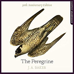 The Peregrine: 50th Anniversary Edition: Afterword by Robert Macfarlane (Audiobook)