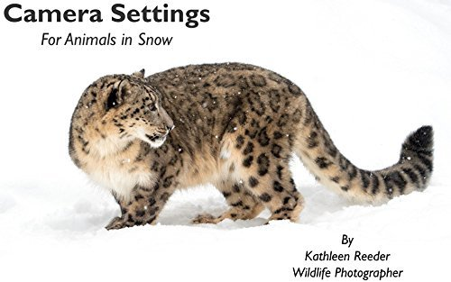 Camera Settings: For Animals in Snow