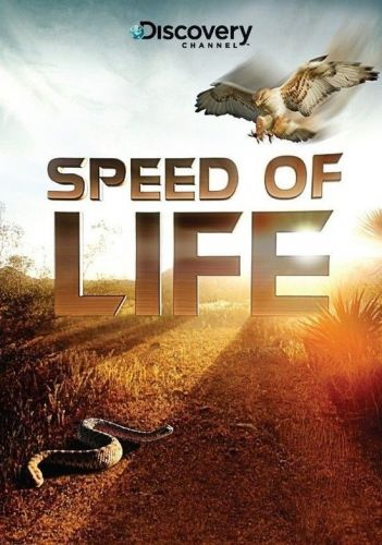 Discovery Channel Speed of Life 2010 Part1 BRRip XviD MP3-RARBG