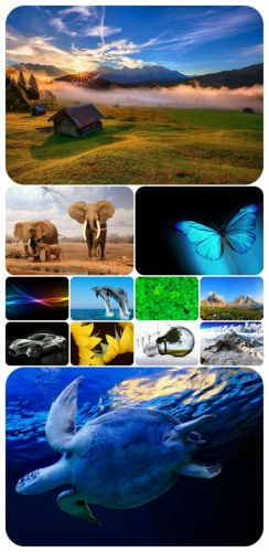 Beautiful Mixed Wallpapers Pack 301