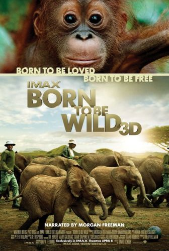 Born to Be Wild (2011) BRRip XviD MP3-MVGroup