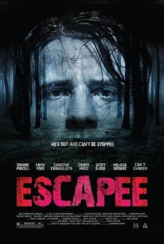 Escapee aka Asylum Escape 2011 BRRip XviD MP3-RARBG