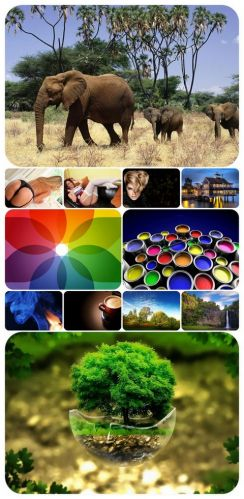 Beautiful Mixed Wallpapers Pack 317