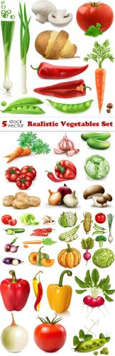 Vectors - Realistic Vegetables Set