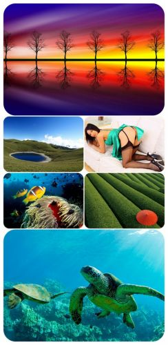 Beautiful Mixed Wallpapers Pack 315