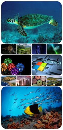 Beautiful Mixed Wallpapers Pack 305