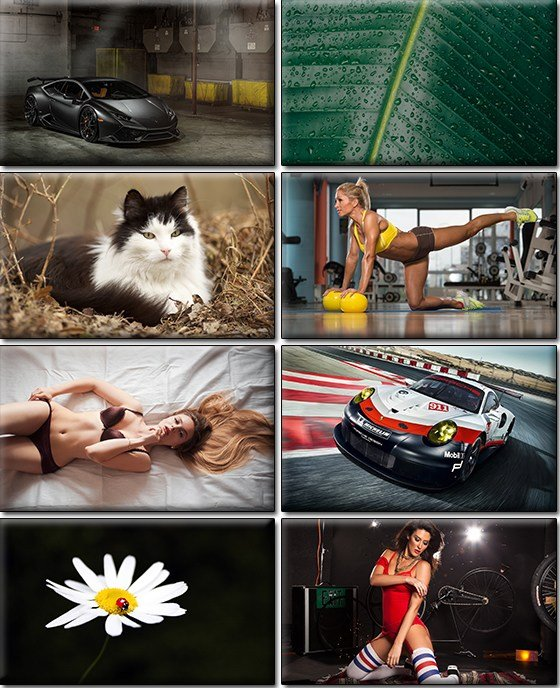 Download LIFEstyle News MiXture Images. Wallpapers Part ...