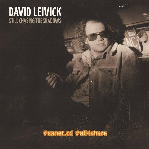 David Leivick - Still Chasing The Shadows (2017)