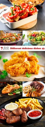 Photos - Different delicious dishes 43