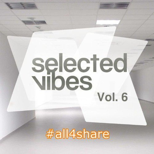 VA - Selected Vibes Vol 6 Finest Electronic Music (2017)