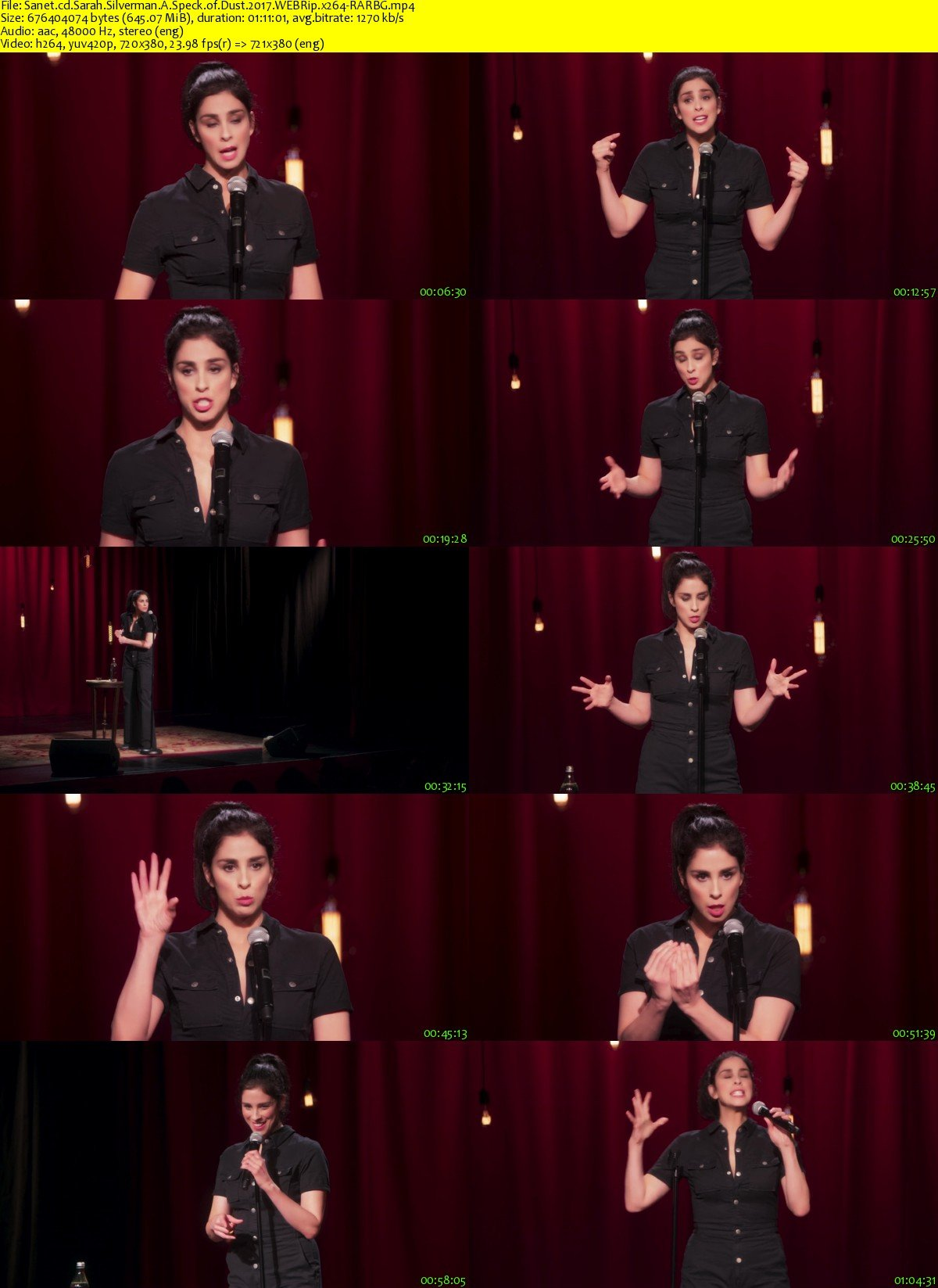 Download Sarah Silverman A Speck of Dust 2017 WEBRip x264 ...