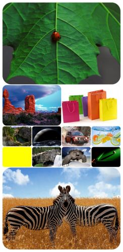 Beautiful Mixed Wallpapers Pack 331