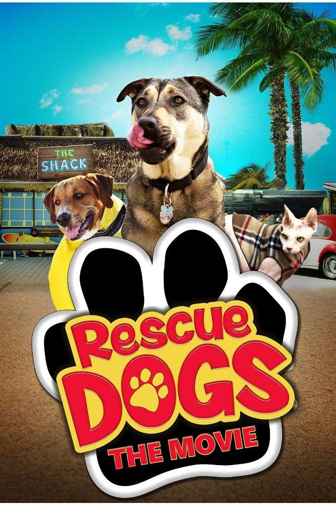 Courtney Daniels Rescue Dogs