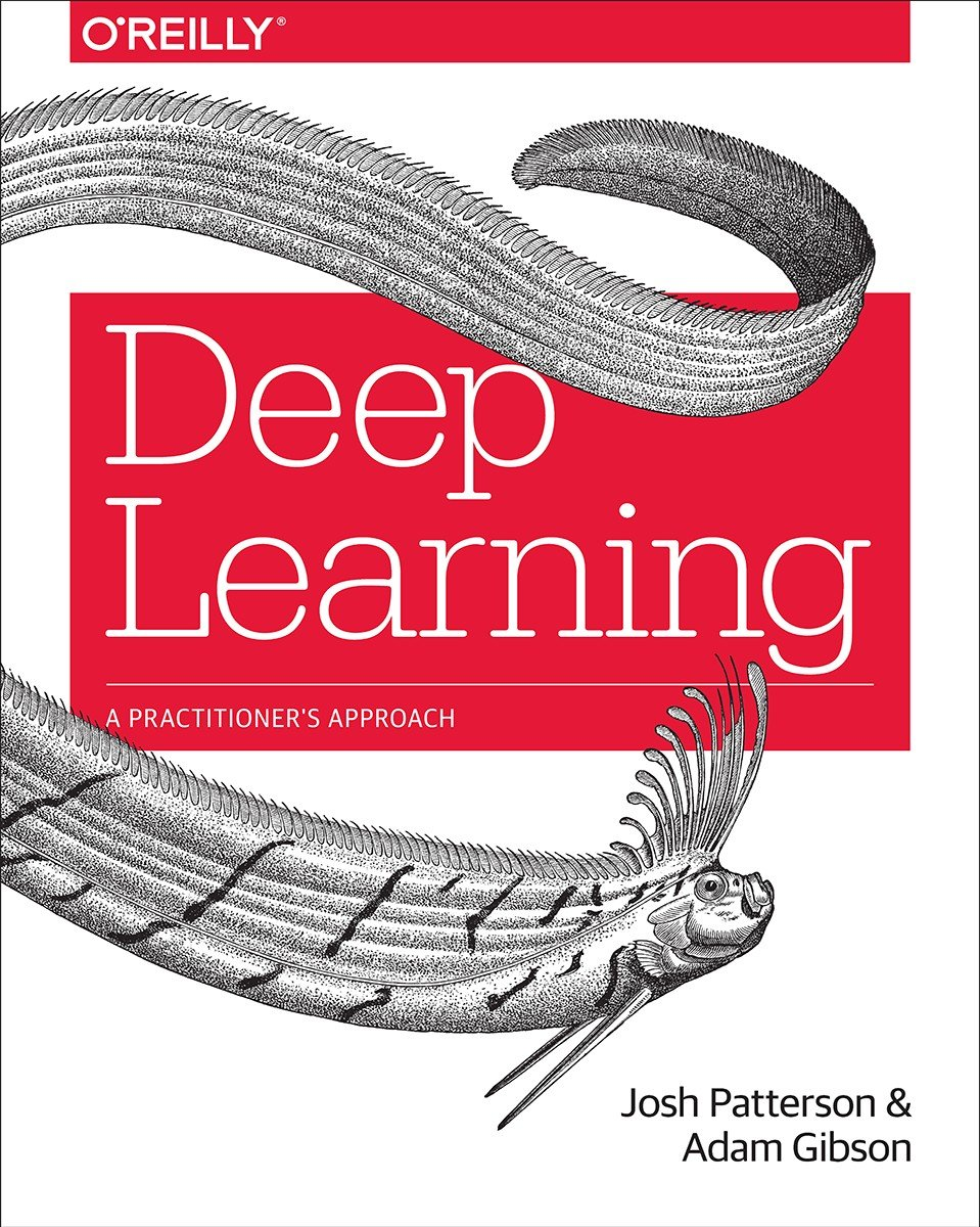 Download Deep Learning A Practitioner S Approach True Pdf